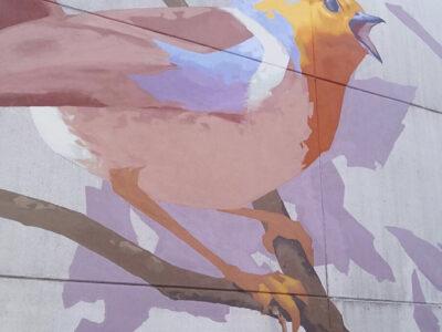 Muraal_anetta